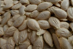 semences cucurbita mixta seeds