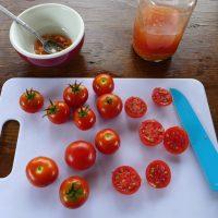 semences tomate Latah tomato seeds